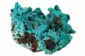 "Buy 3.4"" Chrysocolla and Malachite Pseudomorph - Lupoto Mine, Congo - #167674"