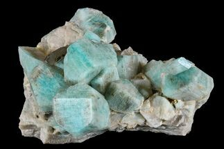 "Buy 3.2"" Amazonite Crystal Cluster with Smoky Quartz - Colorado - #168082"
