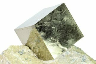 Pyrite - Fossils For Sale - #168507