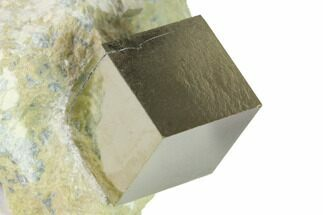 Pyrite - Fossils For Sale - #168483