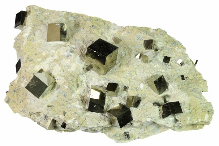 "6.5"" Shiny Pyrite Cubes in Rock - Victoria Mine, Spain"