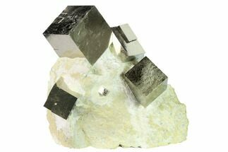 Spectacular Natural Pyrite Cube Cluster in Rock - Navajun, Spain For Sale, #168551