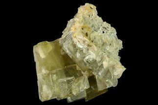 Barite - Fossils For Sale - #169107