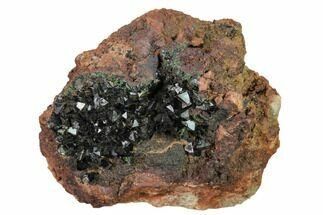 "Buy 2.2"" Deep-Green Libethenite Crystal Cluster - #169825"