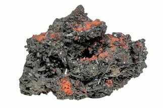 "Buy 2.4"" Andradite Garnet and Gaudefroyite Association - South Africa - #169768"