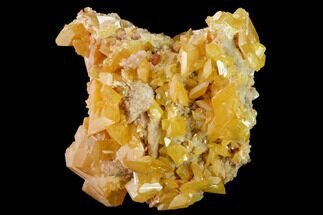 "Buy 1.7"" Orange Wulfenite Crystal Cluster - La Morita Mine, Mexico - #170305"