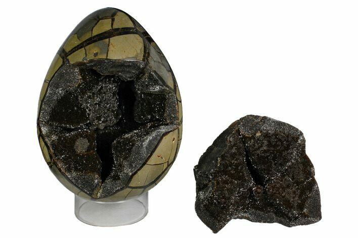 "8.6"" Polished Septarian Puzzle Geode - Black Crystals"