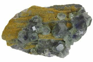 Fluorite & Quartz - Fossils For Sale - #173034