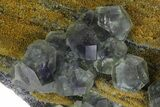"10.3"" Purple-Green Cuboctahedral Fluorite on Sparkling Quartz - China - #173034-1"