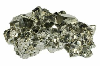 Pyrite - Fossils For Sale - #173277