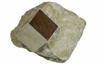 "Buy .55"" Natural Pyrite Cube In Rock - Navajun, Spain - #168442"