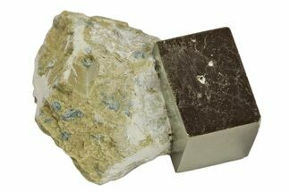 "Buy .67"" Natural Pyrite Cube In Rock - Navajun, Spain - #168460"