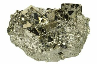 Pyrite  - Fossils For Sale - #173514