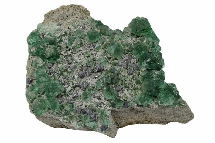 "4"" Fluorescent Green Fluorite With Galena - Rogerley Mine, England"
