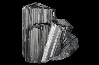 Tourmaline var. Schorl - Fossils For Sale - #174147