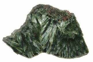 "Buy 3.7"" Polished Seraphinite Slab - Siberia - #174856"