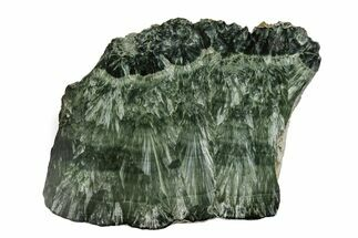 "Buy 5.8"" Polished Seraphinite Slab - Siberia - #174919"