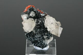 "2.1"" Beta Quartz Crystals on Lustrous Bladed Hematite - England For Sale, #175430"