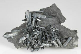 Buy Metallic Stibnite Crystal Spray On Matrix - Xikuangshan Mine, China - #175909
