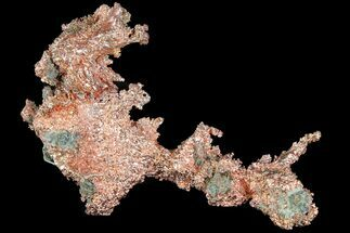 "Buy 3.5"" Natural, Native Copper Formation - Michigan - #177208"