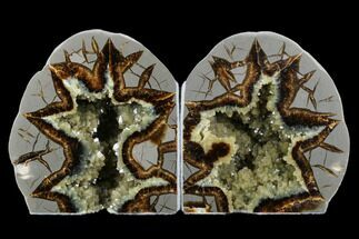"4.4"" Tall, Crystal Filled Septarian Geode Bookends - Utah For Sale, #176822"
