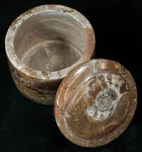 Small Fossil Goniatite Jar (Brown) - Stoneware For Sale, #18014